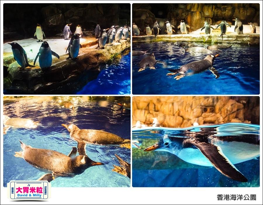 2016香港自由行@香港海洋公園@大胃米粒 0041.jpg