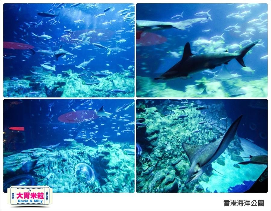 2016香港自由行@香港海洋公園@大胃米粒 0014.jpg