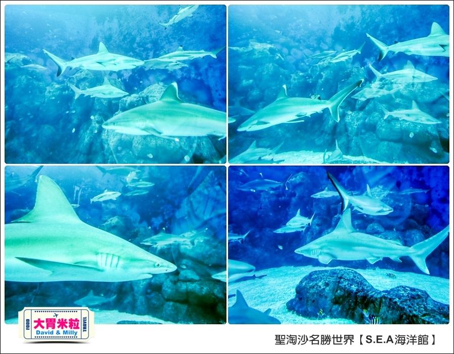 聖淘沙名勝世界必玩@SEA海洋館與海之味餐廳@大胃米粒001 (12).jpg