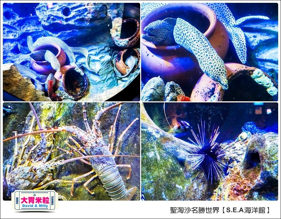 聖淘沙名勝世界必玩@SEA海洋館與海之味餐廳@大胃米粒001 (20).jpg