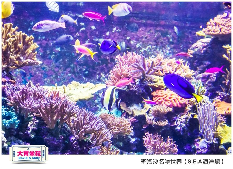 聖淘沙名勝世界必玩@SEA海洋館與海之味餐廳@大胃米粒001 (23).jpg