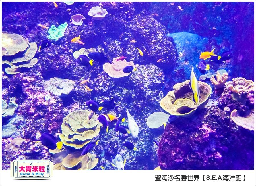 聖淘沙名勝世界必玩@SEA海洋館與海之味餐廳@大胃米粒001 (24).jpg
