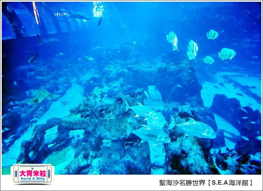 聖淘沙名勝世界必玩@SEA海洋館與海之味餐廳@大胃米粒001 (72).jpg
