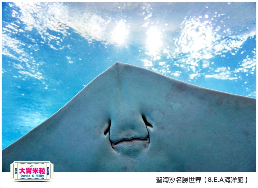 聖淘沙名勝世界必玩@SEA海洋館與海之味餐廳@大胃米粒001 (70).jpg