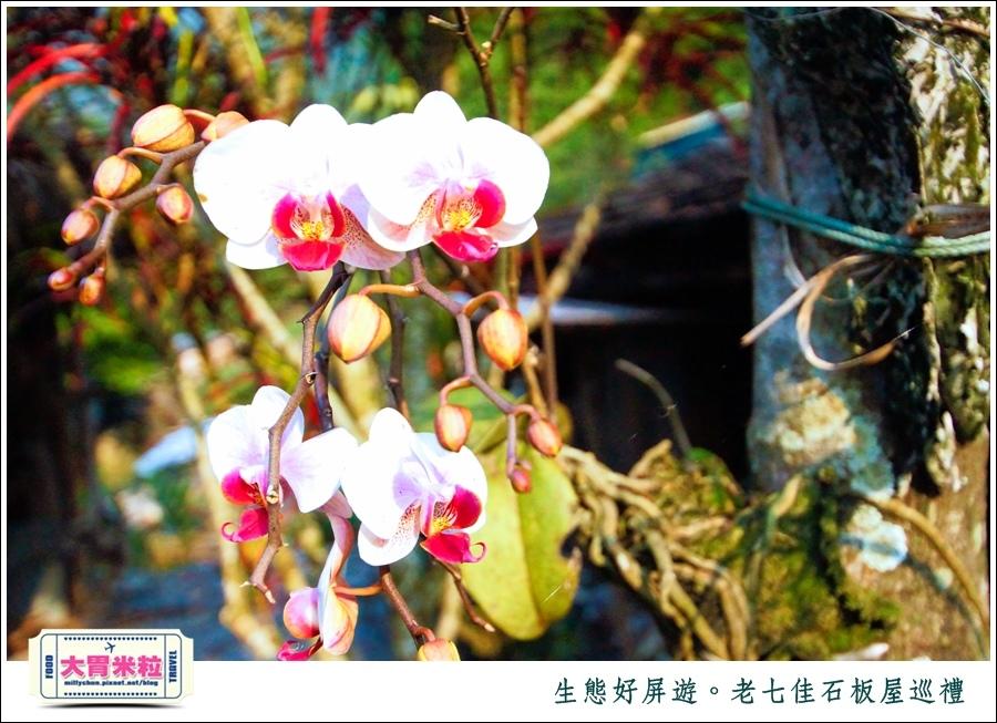 屏東旅遊景點推薦-生態好屏遊-老七佳石板屋巡禮-millychun0044.jpg