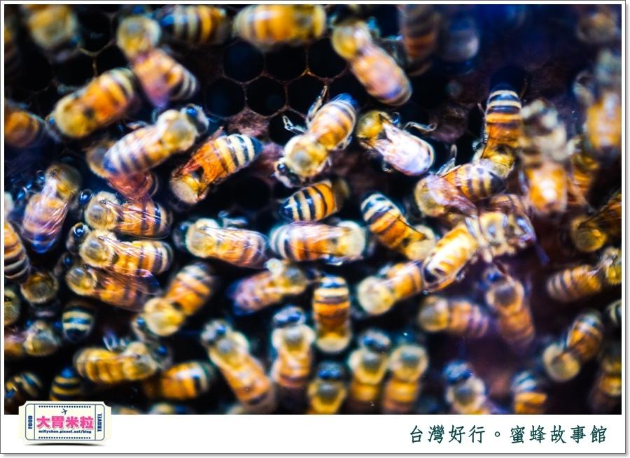 台灣好行雲林斗六古坑線-蜜蜂故事館@大胃米粒0017.jpg