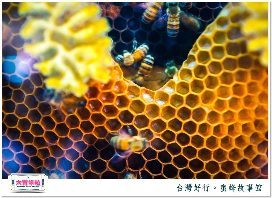 台灣好行雲林斗六古坑線-蜜蜂故事館@大胃米粒0019.jpg