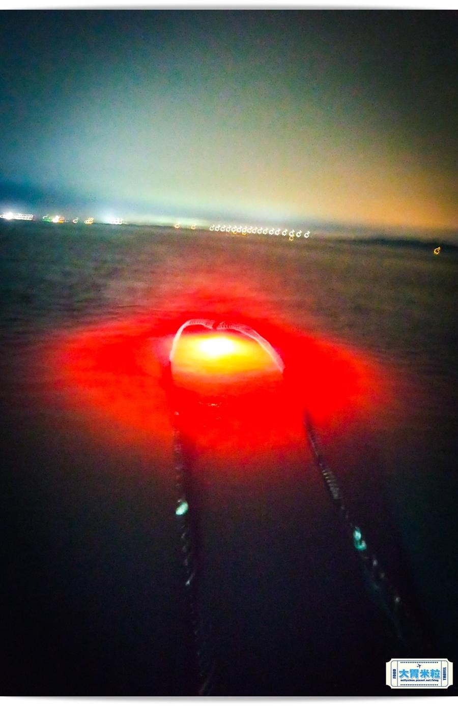 澎湖夜釣小管體驗l0035.jpg