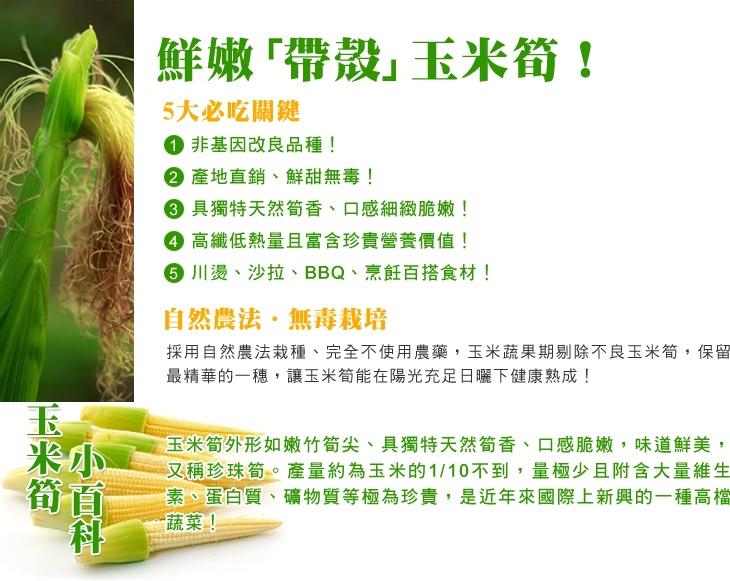 玉米3.jpg