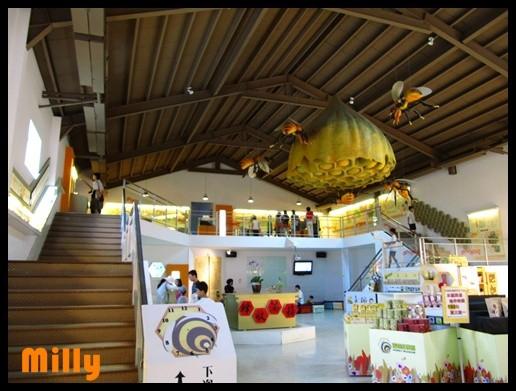 雲林景點推薦,蜜蜂故事館,綠色隧道景觀公園