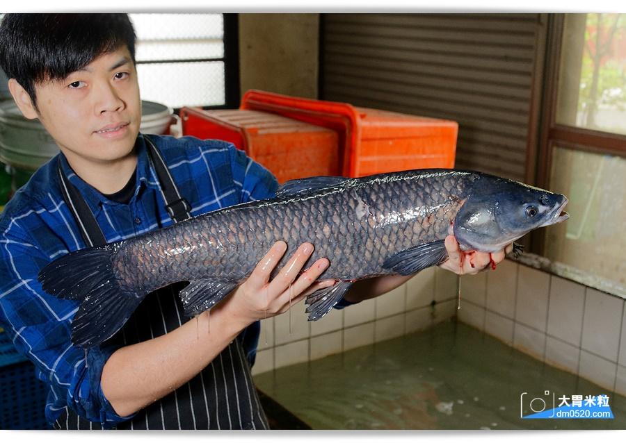 十一份活魚餐廳